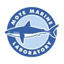 Mote-logo-thumb