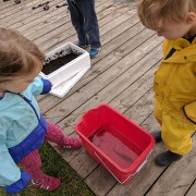 Two children looking into a bucket with a Perch inside