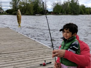 A young boy and his father on the dock with their catch of the day
