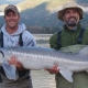 6-foot White Sturgeon caught on the lower Fraser River